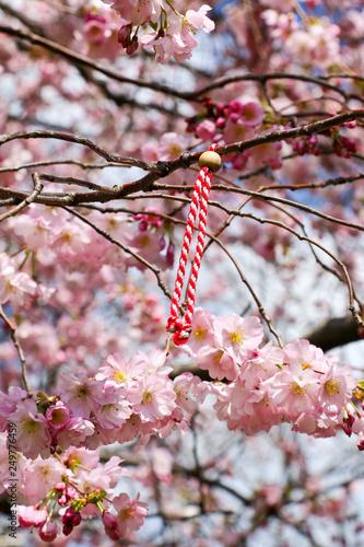 Fleurs De Sakura Et Porte Bonheur Chinois Stock Photo And Royalty