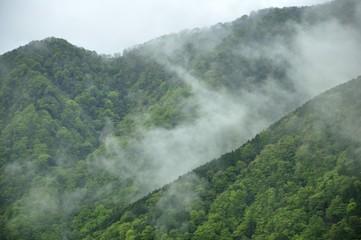 雲晴れる新緑の山