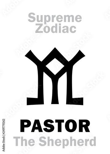 Astrology Alphabet: PEGASUS «Volucer Equus» (The Winged Horse
