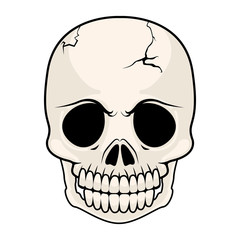 Isolated cracked skull image. Vector illustration design