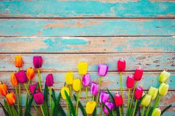 Wall Mural - Tulip blossom flowers on vintage wooden background, border  frame design. vintage color tone - concept flower of spring or summer background