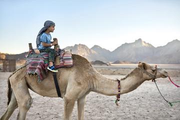 Small boy in checkered keffiyeh riding arabian camel outdoors