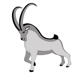 mountain goat, vector illustration ,  profile view, flat