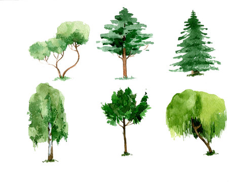 Set of green watercolor trees. hand drawn illustration isolated on white background
