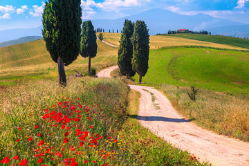 Foto auf Acrylglas Toskana Summer Tuscany landscape with grain fields and rural road, Italy