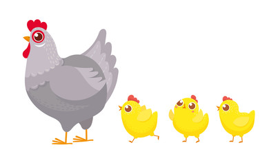 Chicks following chicken. Spring easter chickens, hatched chick and hen family cartoon vector illustration