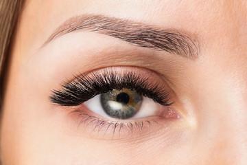 Volume eyelash extensions. Good vision and fresh looking eye. Brown eyebrow liner, clear skin