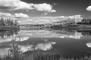 Summer view of the water surface of the river with overgrown picturesque banks and Cumulus clouds in the blue sky, monochrome.