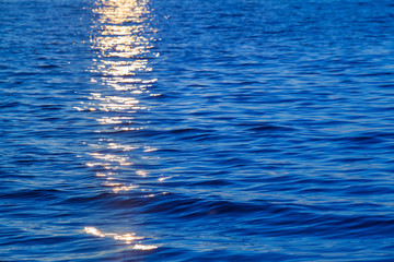 Sunset at Sea Detail / Reflecting yellow sunlight at sunset on blue water surface background (copy space)