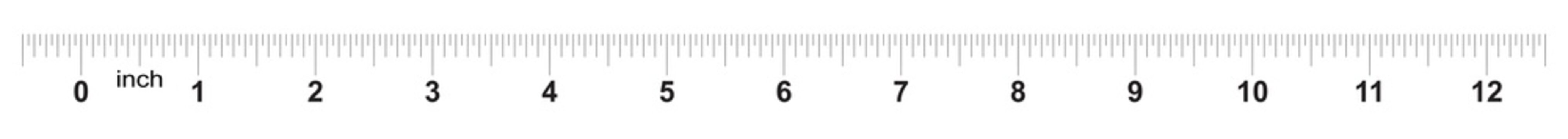 Ruler 12 inches. Metric inch size indicator. Decimal system grid. Measuring tool