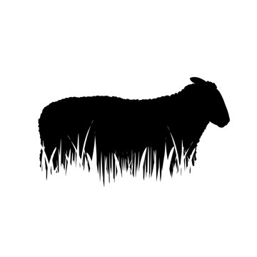 Illustration of sheep icon in the grass. Vector silhouette on white background. Symbol of cattle.