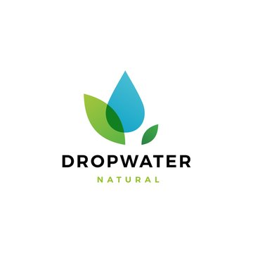 drop water leaf logo vector icon