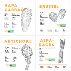 Set of vegetables nutition facts. hand draw sketch vector.