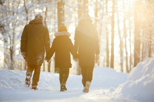 Back view portrait of happy family holding hands enjoying walk in winter forest lit by sunlight, copy space
