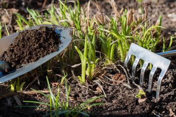 Kompost - Naturünger - Blumenbeet - Frühling