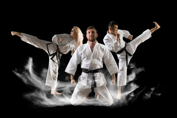 Three martial arts masters, karate, taekwondo practice