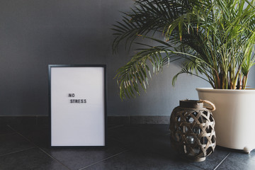 """White letterboard. Grey wall. Green plant. With the inscription """"NO STRESS""""."""