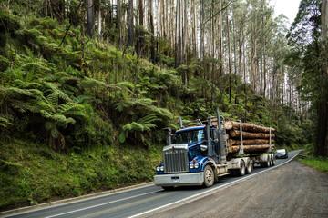 Logging truck on a road through a temperate rainforest near Melbourne in Victoria, Australia