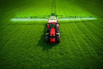 Wall Mural - Tractor plowing and spraying on green agricultural field, aerial drone top view