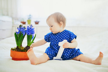 Baby girl in blue dress sitting on bed with blue hyacinths