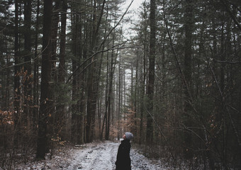 A girl in the woods looking up at the trees