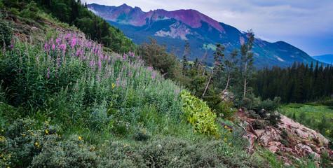 Purple mountains majesty in the Colorado Rocky Mountain Wildernes