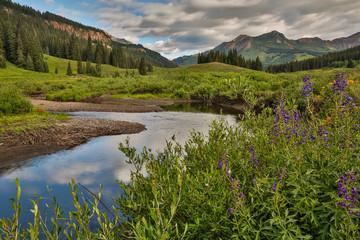 River curves through a wildflower meadow