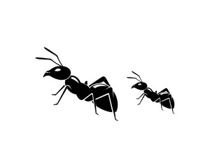 Ant Logo template vector illustration