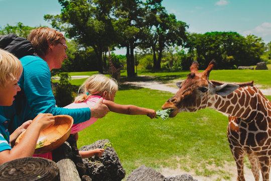 father and kids feeding giraffes in zoo
