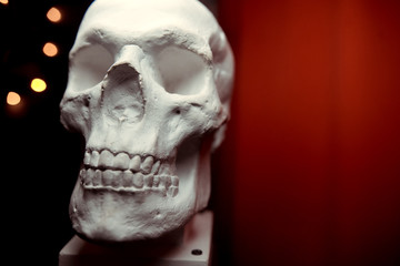 anatomical plaster skull, bust, sculpture on the black background