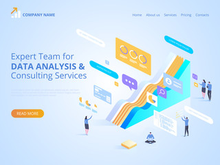 Expert Team for Data analysis & Consulting Services. Vector isometric