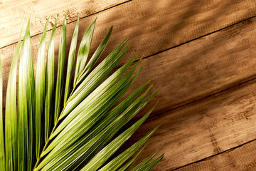 Palm Sunday concept Wall mural