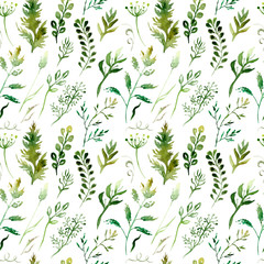 watercolor drawing seamless pattern of field plants, flowers and herbs