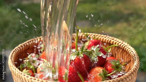 Fototapete Wash strawberries in bamboo basket with fresh water in Slow Motion