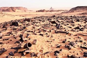 Zeugnisse einer früheren Vegetation, Reste eines versteinerten Waldes, Sahara