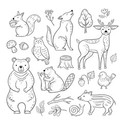 Doodle forest animals. Woodland cute baby animal squirrel wolf owl bear deer snail childrens sketch vector hand drawn set. Illustration of animal owl and squirrel, wolf and beaver