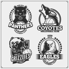 Sef of volleyball badges, labels and design elements. Sport club emblems with grizzly bear, panther, coyote and eagle. Print design for t-shirts.
