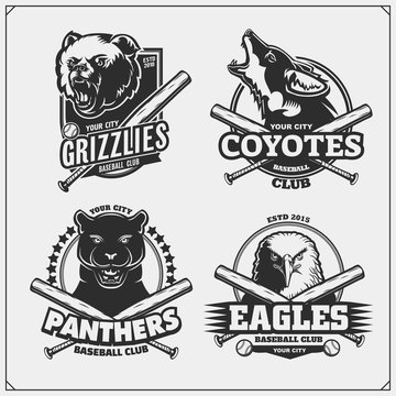 Set of baseball badges, labels and design elements. Sport club emblems with grizzly bear, panther, coyote and eagle. Print design for t-shirts.