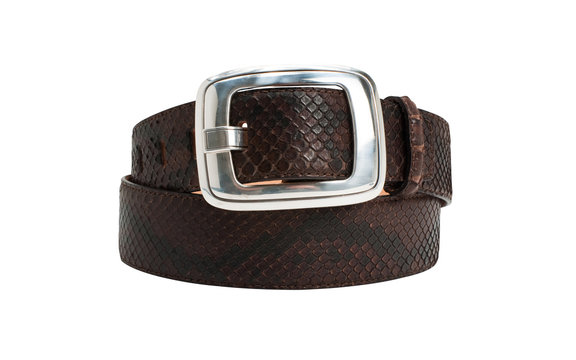 Brown snake leather belt with big buckle on white background
