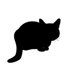 Silhouette cat vector