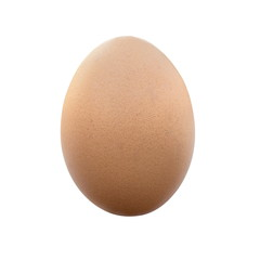 Chicken egg isolated on a white background.