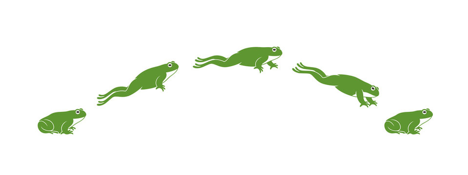 Frog jumping. Isolated frog jumping on white background