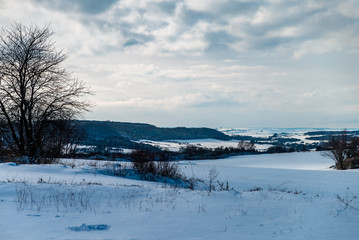 Paysage de neige près d'une forêt en Moselle