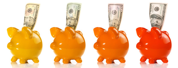 Piggy Bank with different Amount of Dollar on white Background