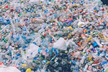 PLASTIC POLLUTION in the jungle. Dirty plastic bottles and bags on a garbage. Ocean pollution, plastic in water. Pollution and recycle eco concept. Background