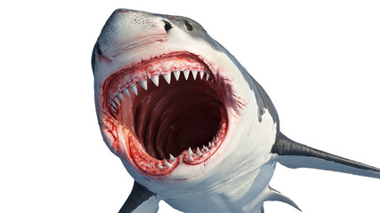 White shark marine predator with big open mouth and teeth. 3D rendering