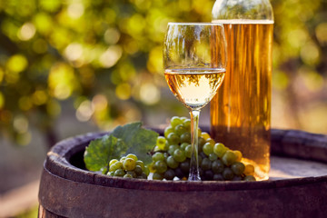 The glass of white wine with bottle on a wooden barrel in a sunny day