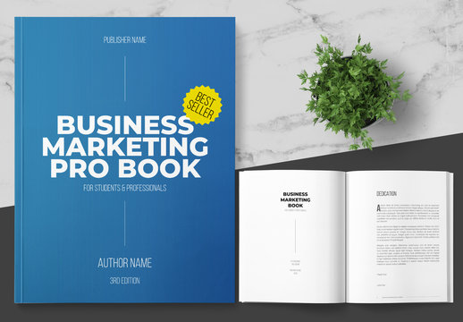 Business Marketing Book Layout with Blue Accents