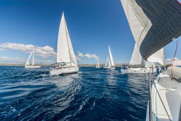 Sailing regatta yachts competition