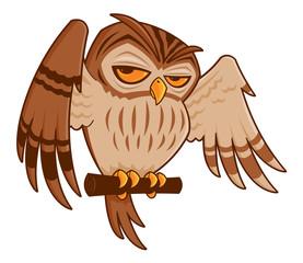 Cartoon Owl on Perch